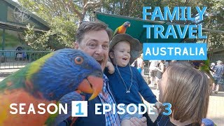 THE BEST GOLD COAST FAMILY DAY | Currumbin Wildlife Sanctuary | Family Travel Australia Series EP 3