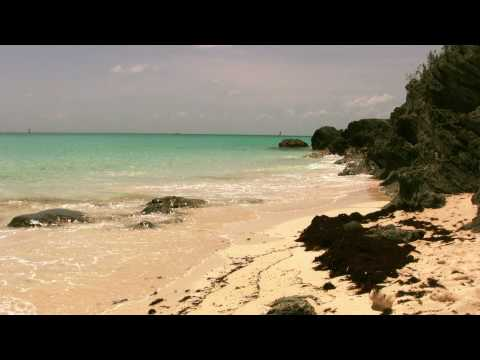 Small Beach In Bermuda, West Whale Bay, HD Video