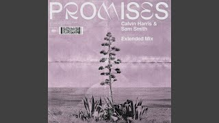 Promises (Extended Mix) Video