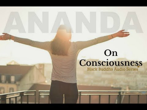 Ananda Abinou: On consciousness