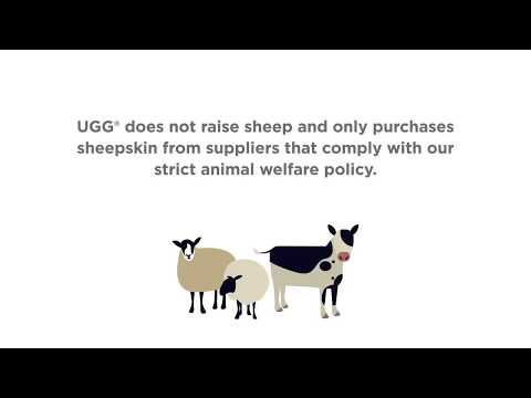 UGG: Our Commitment To Animal Welfare