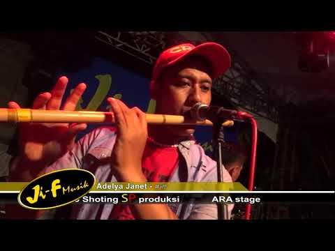 WIL-Adelya zanet-Ji-F musik