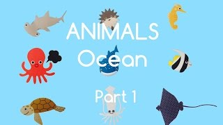 LEARN OCEAN ANIMAL NAMES REAL OCEAN SOUND N SCENES FOR KIDS PART 1