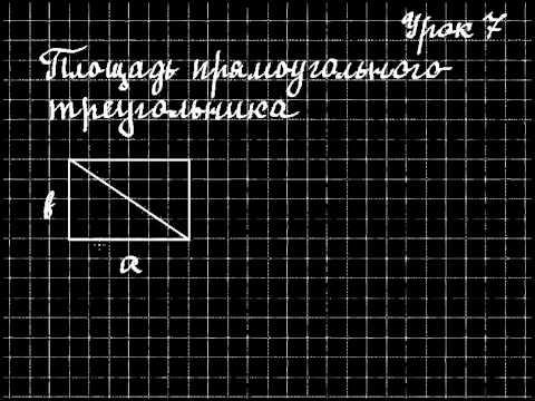 Как определить площадь прямоугольного треугольника