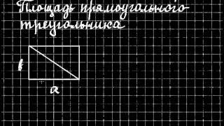 видео Найти площадь и периметр прямоугольного треугольника