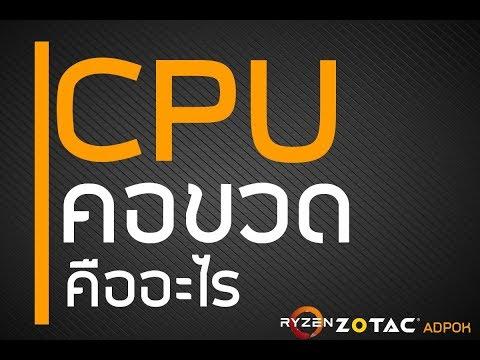 CPU คอขวดคืออะไร ทำไมเล่นเกม CPU ขึ้น 100% ทำไมการ์ดจอทำงานได้ไม่เต็มที่