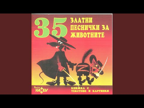 Zhabeshka Polka Bulgaria
