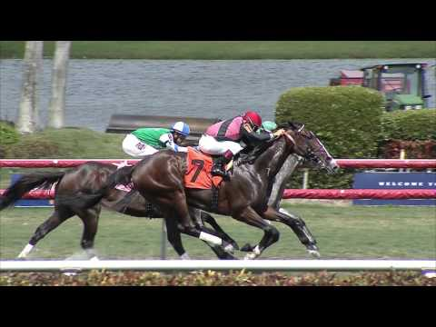 Gulfstream Park Replay Show | April 23, 2016