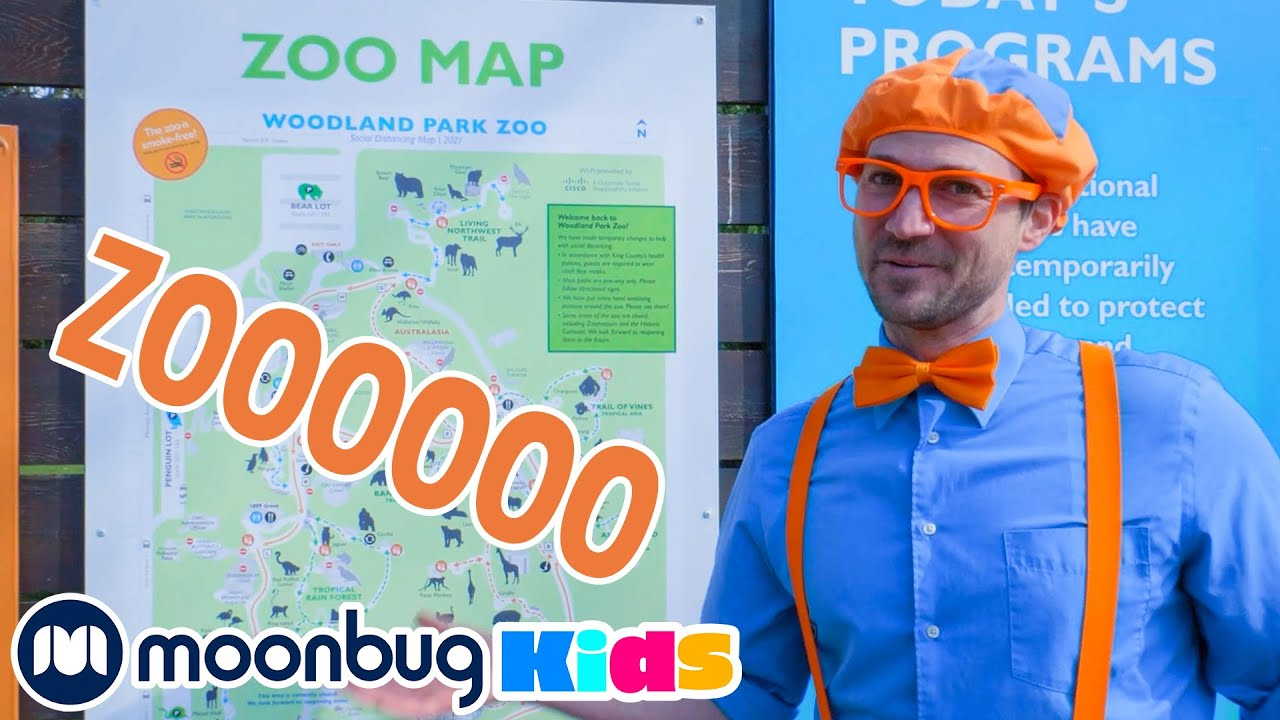 Blippi at the Zoo - Feeding the Animals   Explore with BLIPPI!!!   Educational Videos for Toddlers