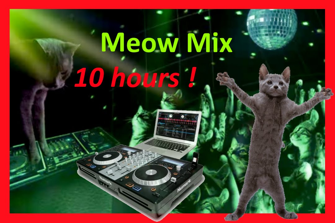 Download meow mix song/rag sheet music by tom mcfaul sheet music.