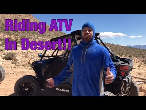 Riding ATV in Mojave Desert!! Run into wild stallions