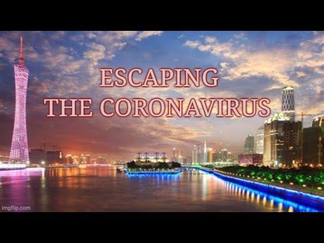 Coronavirus In China: The Impacts Of Quarantined Cities