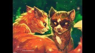 Коты воители-твоя я не твоя
