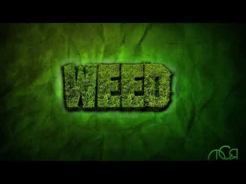 **WEED** Reggae Trap Beat Instrumental 2018 FD
