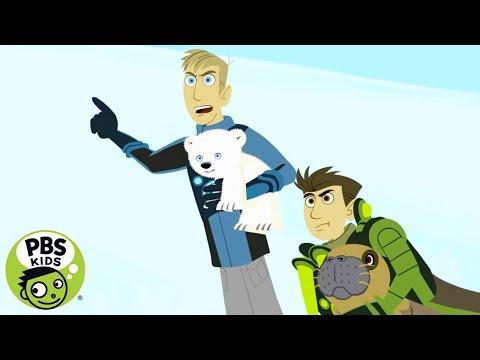 WILD KRATTS   Mommy Rescue   PBS KIDS