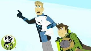 Wild Kratts: Mommy Rescue thumbnail