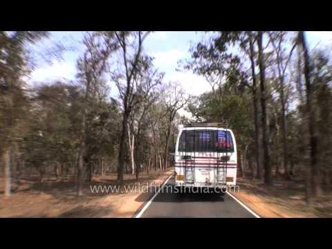 Driving from Kanha to Jabalpur in Madhya Pradesh