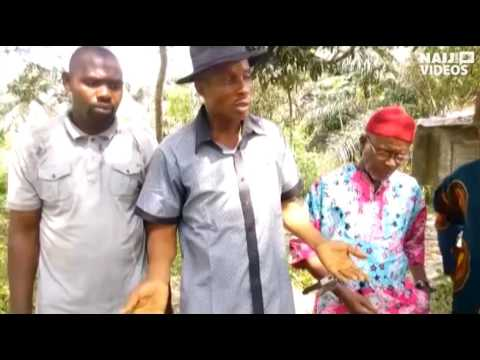 How oil pollution sent community packing on Ogoniland