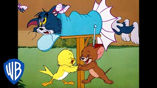 Tom & Jerry |  B-b-b-birds! | Classic Cartoon Compilation | WB Kids