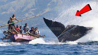 RAKSASA 8 Penyerangan MONSTER Besar Di Laut Terhadap Kapal MP3