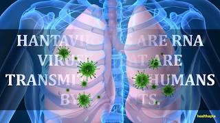 HANTAVIRUS PULMONARY SYNDROME FACTS