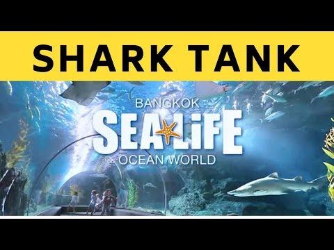 Shark Tank | Siam Ocean World| Bangkok