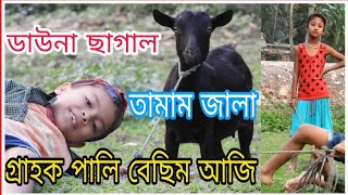 Assamese funny video/ assamese comedy/ Telsura/ voice assam