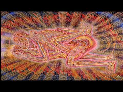 Terence McKenna   The Silver Bullet To Love