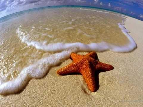 Как две морские звезды песня слушать