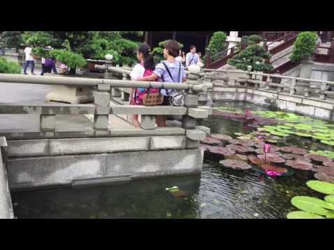 Chi Lin Nunnery Hong Kong [7.5.2017]