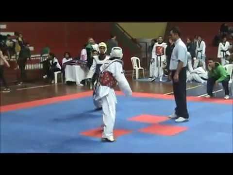 Final do Porto Alegre Open 2011 de Taekwondo