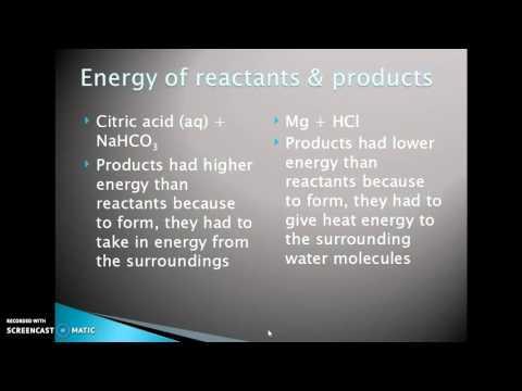 Endothermic/Exothermic Investigation: Analysis PAP