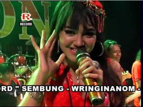 Grajagan Banyuwangi - Jihan Audy - MADONA SIDOARJO Live Kempreng