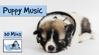 Puppy Music. Music Designed To Soothe Young Dogs And Puppies!