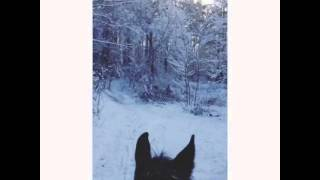 Конная прогулка по зимней сказке(, 2015-12-08T09:45:05.000Z)