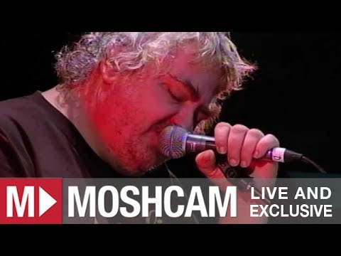 Daniel Johnston - Life In Vain | Live in Sydney | Moshcam