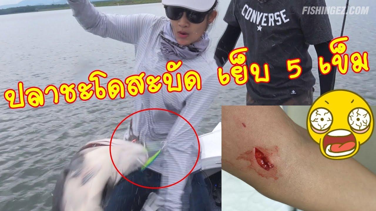 ปลาชะโดสะบัดหลุดจากมือ ตัวเบ็ดเกี่ยวแขนเมย์มี่ fishingEZ