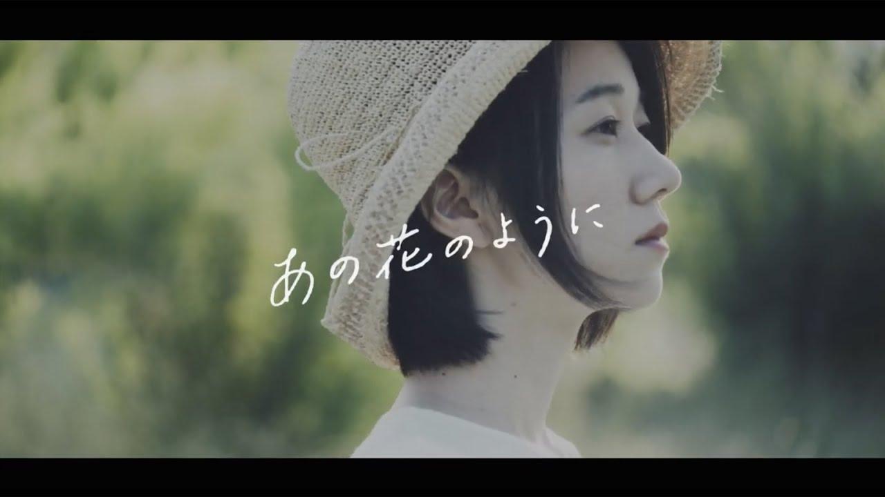 「あの花のように」リニューアルMV公開!!
