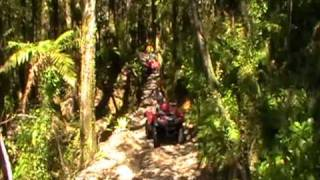 Quad Biking in Mud and Forest  | Greymouth, NZ