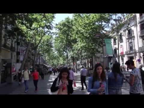 ingenia-hostelería---reformas,-diseño-y-decoración-de-bares-y-restaurantes-en-barcelona