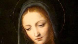 Cooking | Magnificat anima mea Dominum