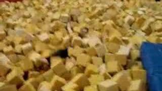 The Foam Pit Thumbnail