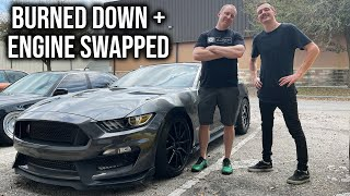 Matt's Reaction to his Old Mustang GT350!