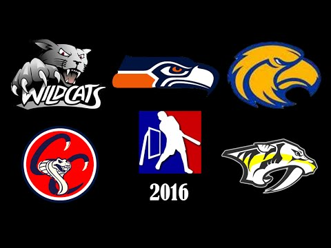 2016 League Update | MLW Wiffle Ball