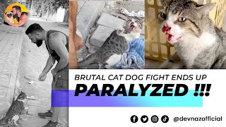BRUTAL CAT DOG FIGHT ENDS UP PARALYZED !!!