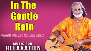In The Gentle Rain | Pandit Vishwa Mohan Bhatt (Album: Music For Relaxation)