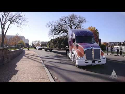 2017 Capitol Christmas Tree Arrival