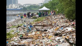 From youtube.com: Plastic Pollution Movement {MID-297644}