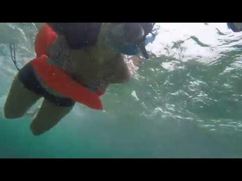 Las Islas Marietas- snorkeling