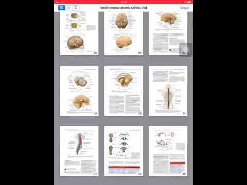 Neuroanatomia Snell 7 Edicion Epub